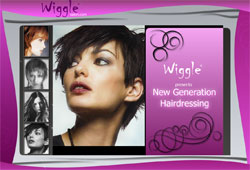 Web design for Wiggle Salon